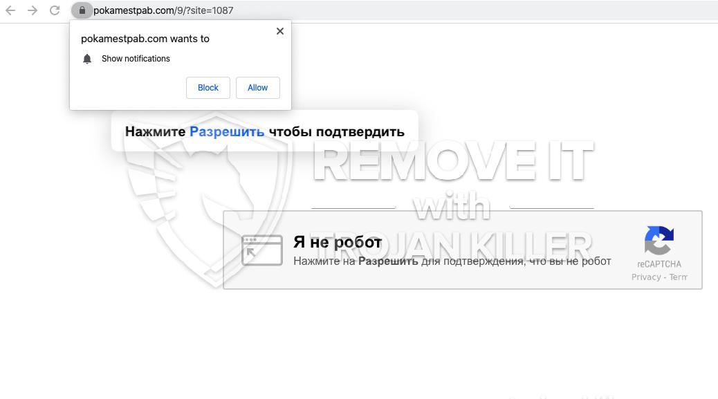 Pokamestpab.com virus