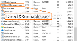 How to remove DirectXRunnable.exe easily in no time