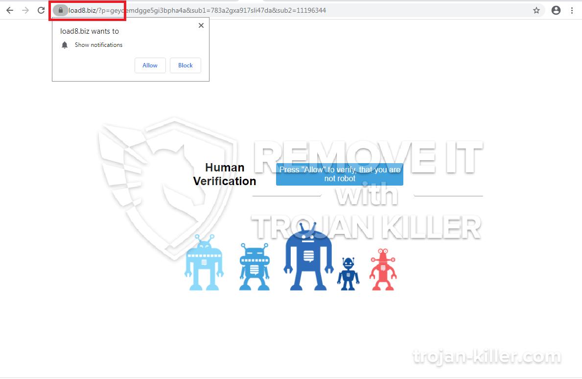 load8.biz virus