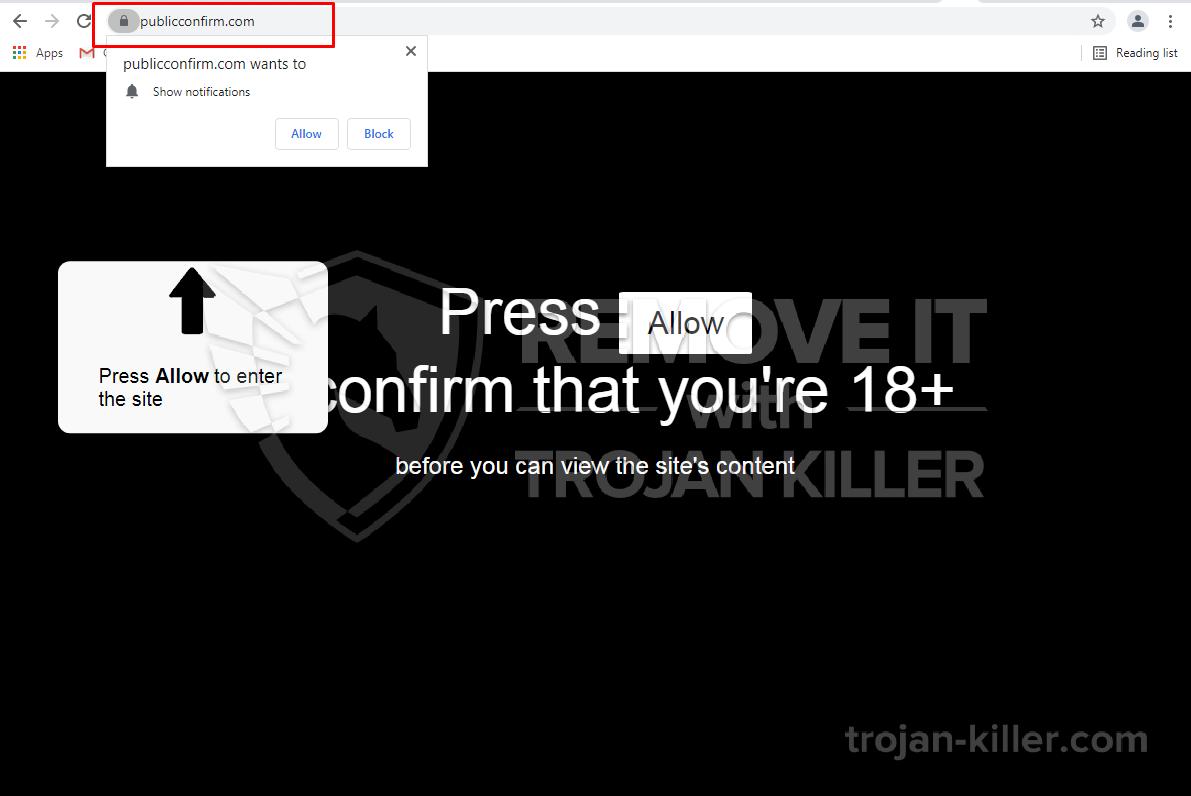 Publicconfirm.com 바이러스