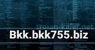 Remove Bkk.bkk755.biz Show notifications