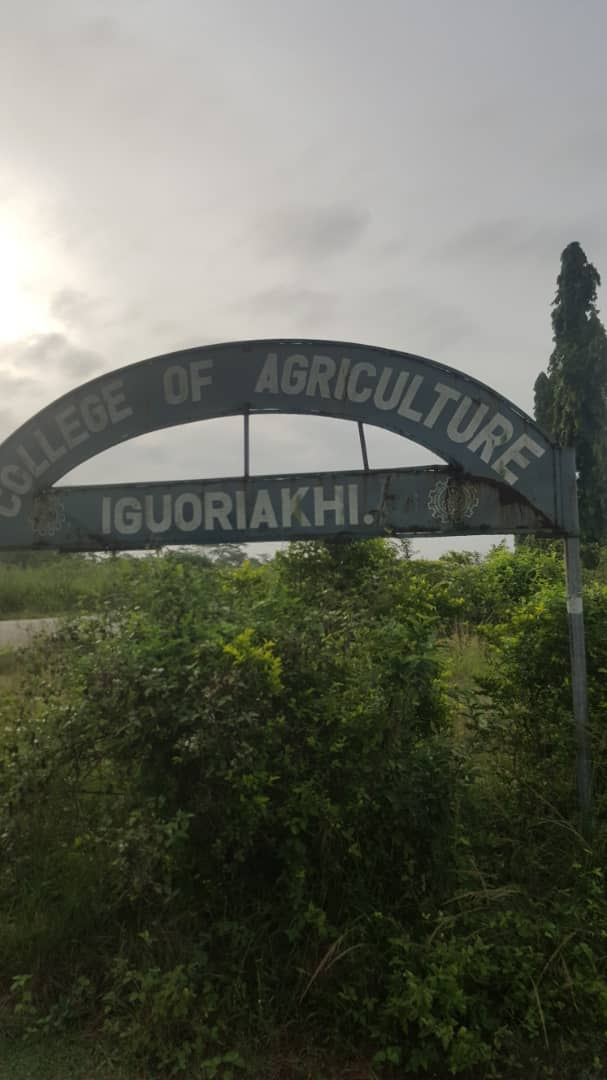 Project Status Update:  COLLEGE OF AGRICULTURE, IGUORIAKHI: ANOTHER UNFULFILLED PROMISE. ANOTHER EXCUSE DELIVERED!