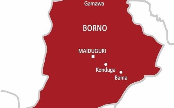 WATCH A Nigerian Federal Law Maker, Hon Ibrahim Abuna Representing Mafa, Dikwa And Konduga Federal Constituency In War Ravaged Borno State Flashes Raw Cash On Poor Citizens