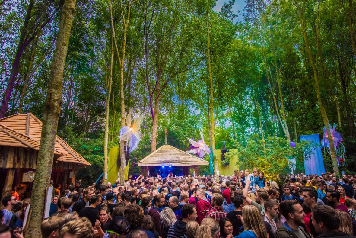 Paradigm Festival: music lovers paradise