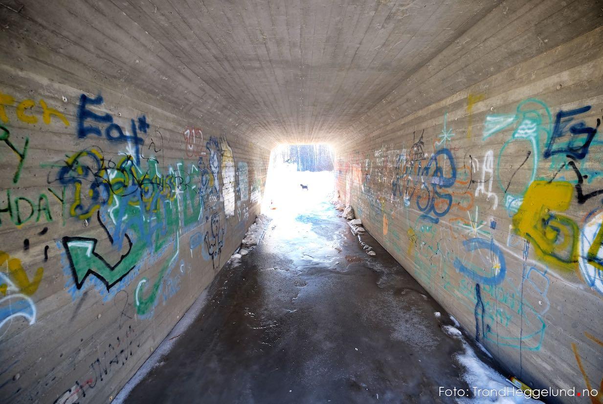 Ikke bare se - men fotografer lyset i tunellen!