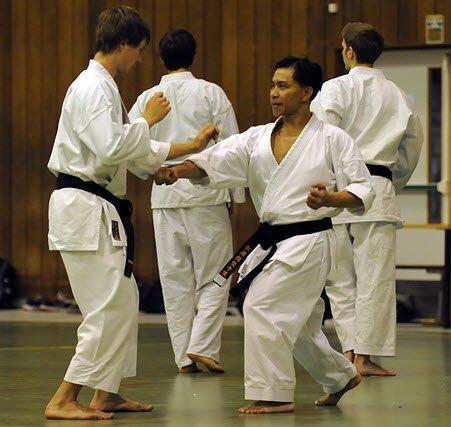 Makotokai Karate