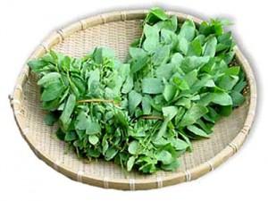 Rau ngót là loại rau xanh có giá trị dinh dưỡng cao