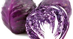 Bắp cải tím - một loại rau dùng ăn sống