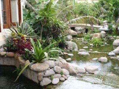 Vườn đá trong thiết kế sân vườn