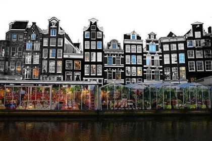 Chợ hoa nổii duy nhất trên thế giới tại Amsterdam