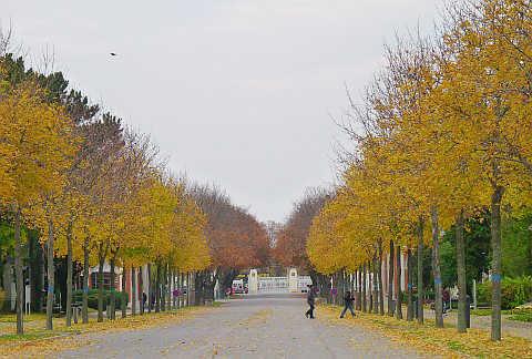 Lối vào chính của Công viên nghĩa trang Vienna, nơi yên nghỉ của nhiều danh nhân thế giới