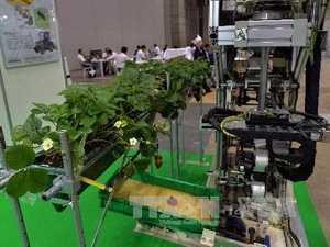 Giới thiệu robot thu hoạch dâu tại triển lãm thiết bị viễn thông và công nghệ tự động ở Tokyo ngày 25/9. AFP/ TTXVN