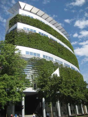 Vườn tầng đứng trong nhà cao tầng