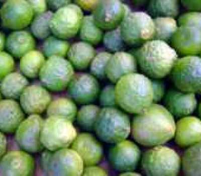 Trái chanh Thái