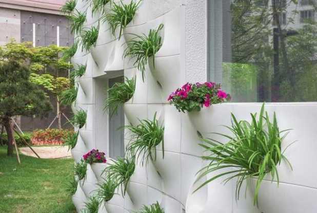 Trồng vườn hoa trên tường nhà - vuon hoa tren tuong nha5