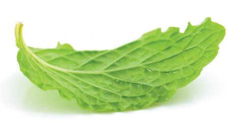 salad-trai-cay1