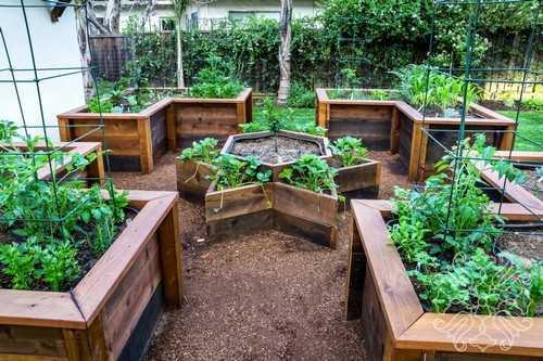 """Khuôn rau với đủ các hình khối và chất liệu đẹp mắt có khả năng """"nâng cấp"""" dáng vẻ vườn rau của bạn lên rất nhiều đấy!"""