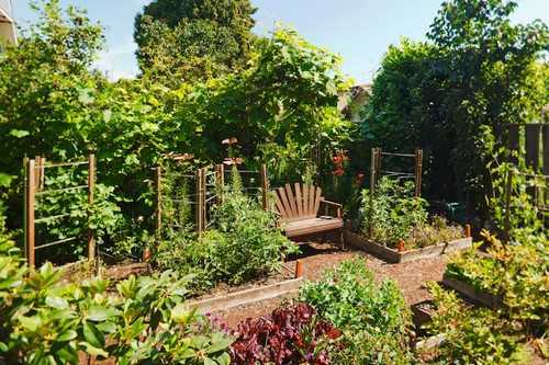 Khu vườn xanh mát với chiếc ghế nhỏ xinh dành cho những giây phút nghỉ ngơi thư giãn