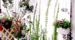 """""""Rất hãnh diện về vườn hoa nên bất cứ ai đến chơi nhà mình cũng phải kéo lên tầng thượng ngồi. Bạn mình cũng rất thích không gian này, vừa nói chuyện, vừa uống trà, thưởng hoa...rất thú vị"""""""