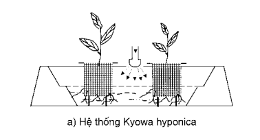 Hệ thống Kyowa hyponica