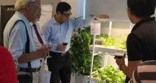 Các chuyên gia lĩnh vực nông nghiệp đóng góp ý kiến cho dự án Hachi