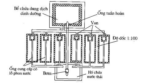 Hình 2.13. Sơ đồ hệ thống trồng trong sỏi tưới ngầm khép kín cung cấp bằng trọng lực