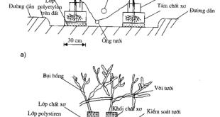 Hình 2.8 : Hệ thống trồng bằng chất xơ. a) hệ thống trồng cà chua b) Hê thống trồng hoa hồng