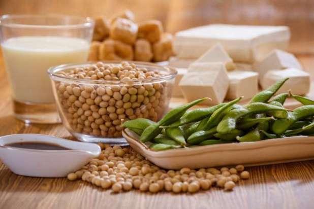 """Ngoài ra, đậu tương được coi là một nguồn cung cấp protein hoàn chỉnh vì chứa một lượng đáng kể cácamino acid không thay thế, cần thiết cho cơ thể. Các thực phẩm làm từ đậu tương được xem là một loại """"thịt không xương"""" vì chứa tỷ lệ đạm thực vật dồi dào, có thể thay thế cho nguồn đạm từ thịt động vật. Các sản phẩm chế biến từ đậu tương có thể là bột đậu tương, đậu phụ, sữa đậu nành, tào phớ,nước tương hay ép lấy dầu đậu nành..."""