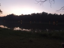 OA Tap Out - View Across The Cove as Dusk Settles