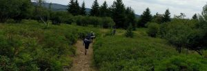 Dolly Sods Backpacking - Troop 51 Annual Tradition