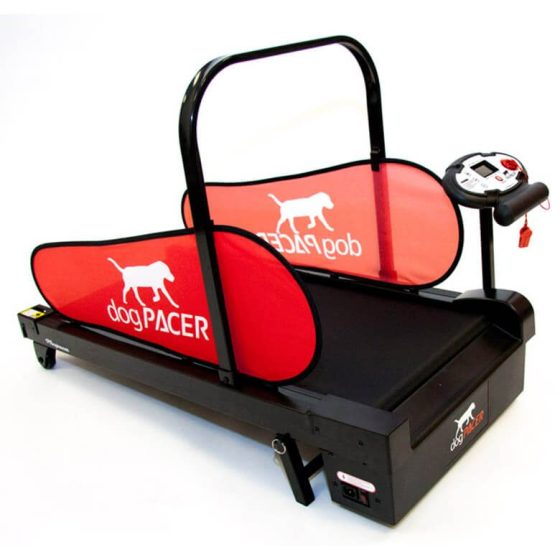 Dogpacer mini Norge