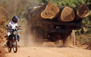 logging-truck-bike_2246385k