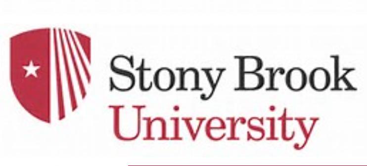 stony brook logo