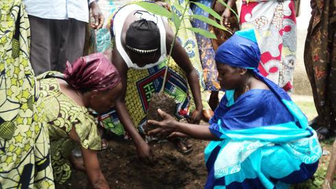 women_in_drc_-_reforestation