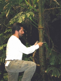 Rodolfo Dirzo, Past-President 1994
