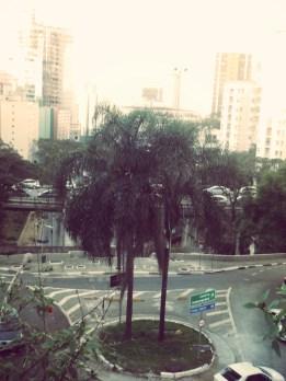 new-tree_Fotor