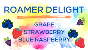 Shaved Ice Flavors-Tropical Sno Peoria-ROAMER DELIGHT- juicy grape, summery strawberry, tart blue raspberry