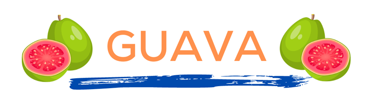 The word guava in orange over a blue paint line with guavas on either side. This page displays flavor combinations made with Tropical Sno Peoria's juicy guava flavor.