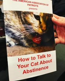 how-to-talk-to-your-cat-about-abstinence