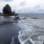 Classroom/Laboratory Activity: Climate Change, the Cryosphere, and Rising Sea Levels