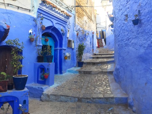 Chefchaouen blue houses morocco