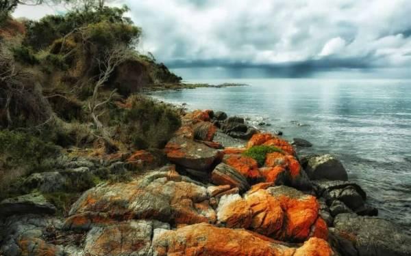 Tasmania Trotterz