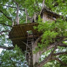Dormir dans une cabane perchée dans les arbres : une expérience insolite !