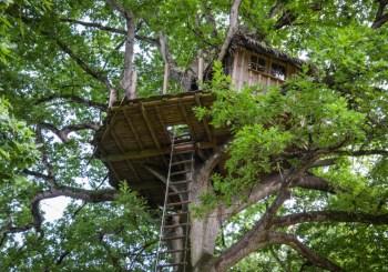 cabane dans les arbres bretagne domaine des ormes blog voyage