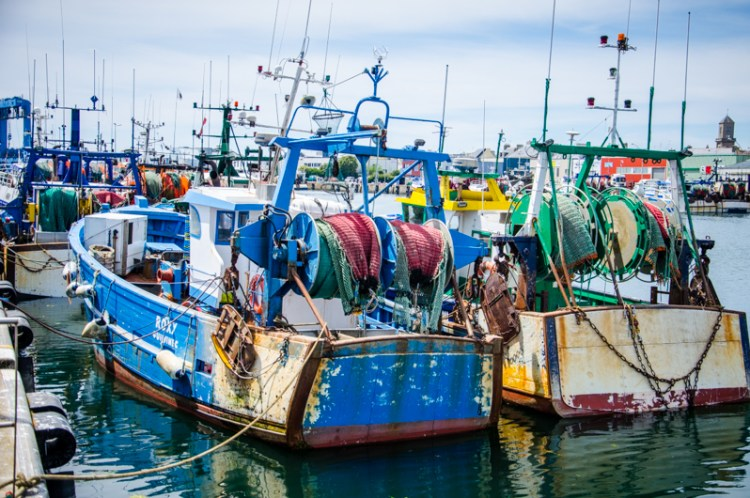 bateaux le guilvinec