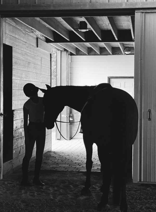 A Shoulder To Cry On: How Horses Helped Me Get Through The Bad Times