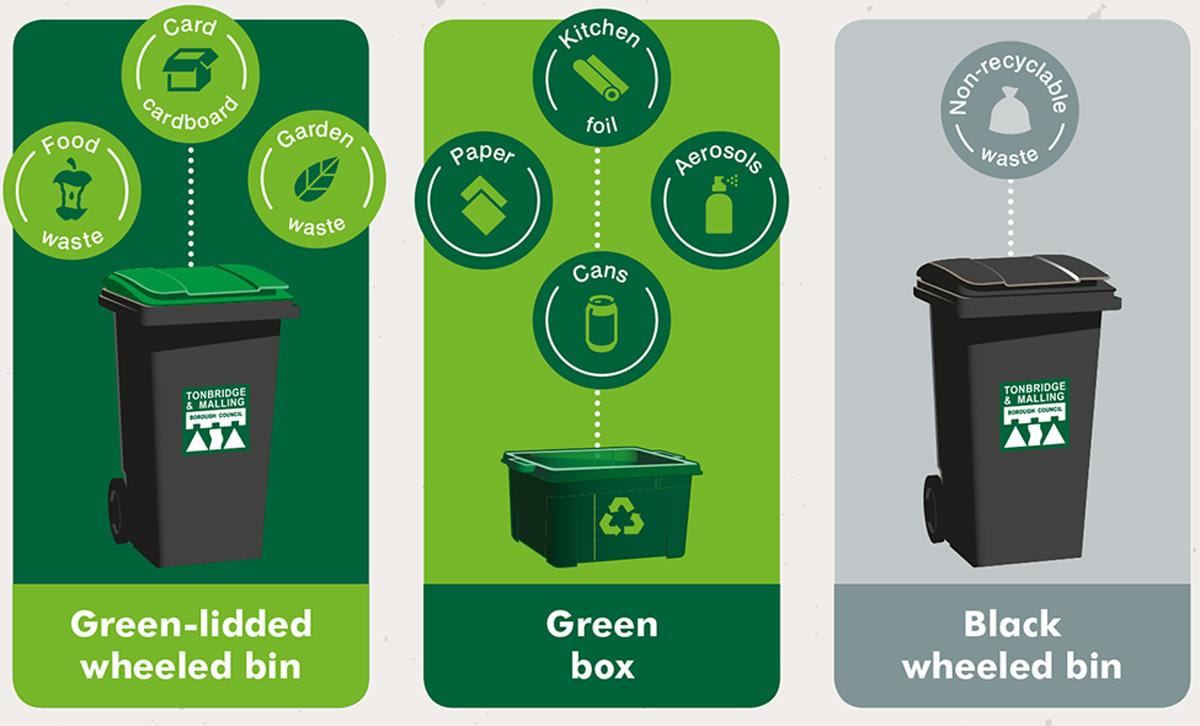 What goes in my bin