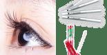 【睫毛增長液推薦】10款讓dcard、ptt網友養成模特兒美睫的秘密武器