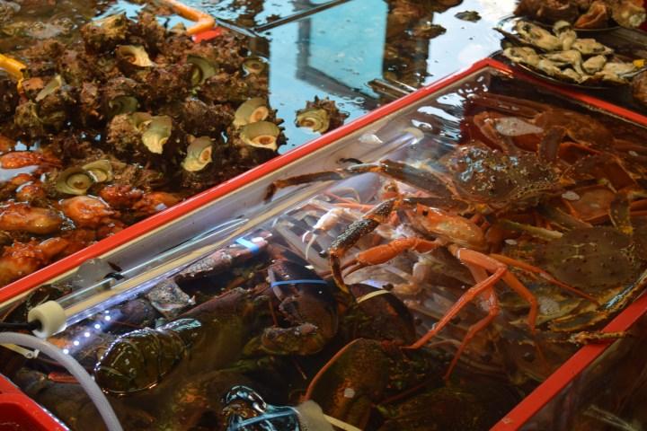 Busan fish market 022