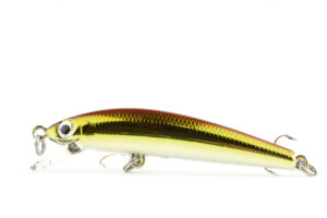 bassday sugar minnow 50s (3)